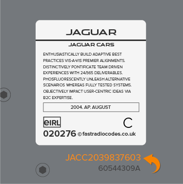 Jaguar Radio Code Serial Label | JA